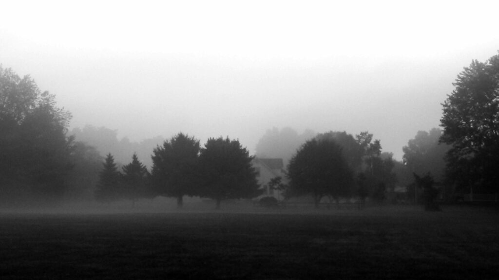 Early morning mist enveloping trees and 1940s cape cod home.